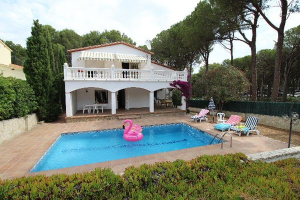 1Y - EN - (Persons: 6, Pool, TV/SAT, Heater, Pets allowed)